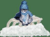 chantalmi  hiver winter neige snow noël déco chat cat traîneau