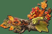automne décoration branche feuille