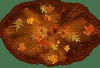 automne deco autumn