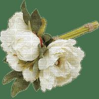Fleur.bouquet.white flower.pivoines.peony.peonies.Victoriabea