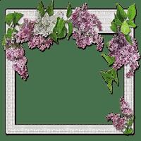 lilac frame spring cadre lilas printemps