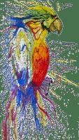 paint, parrot, maali
