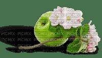 Pomme verte et fleurs de pommier