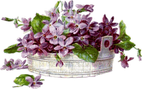 Fleurs.Flowers.pot.vase.Vintage.violet.mauve.Deco.violette.plante.plants.Victoriabea