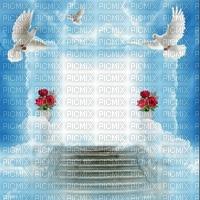 Fond bleu nuage ciel oiseau blanc roses rouges escaliers debutante blue sky bg cloud bg white bird red flower stairs