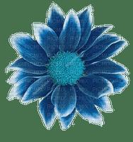 blomma--flowers--blue--blå
