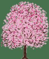 spring printemps frühling primavera весна wiosna  arbre baum tree  garden jardin tube deco pink bloom fleur blüten blossom