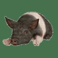 Tube-pig