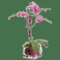 asiatique fleurs web charmille