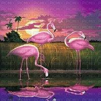 flamingo bg
