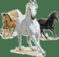 cheval GS