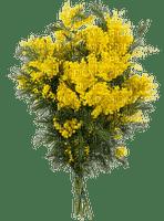 chantalmi fleur mimosa jaune