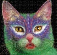 Chat multicolor