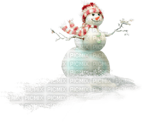 Snowman.Victoriabea