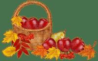apple basket  pomme panier  deco