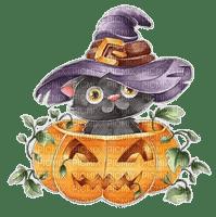 halloween witch cat pumpkin chat sorciere