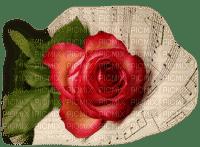 Flowers red bp