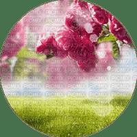 fleurs flower