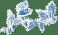 Plants.Leaves.winter.blue.Victoriabea