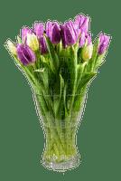 spring printemps frühling primavera весна wiosna tube deco flower fleur blossom bloom blüte fleurs blumen  tulips pot vase
