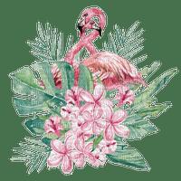flamingo 🦩🦩 FLAMANT ROSE