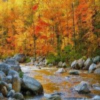forest  wald  foret  paysage    landscape autumn automne herbst river fluss fond background image flux