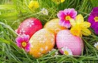 eggs eier œufs easter ostern Pâques paques spring printemps frühling primavera весна wiosna flower fleur blossom bloom blüte fleurs blumen image fond background grass gras garden jardin