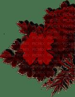 blommor--flowers--red--röd