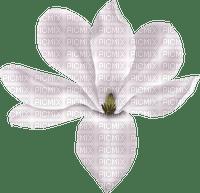 Kaz_Creations Deco Flower Colours
