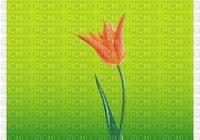 image encre bon anniversaire color effet fleur la nature  edited by me