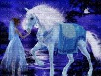 Unicorn en de Fee