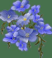 blommor-blå--flowers--blue