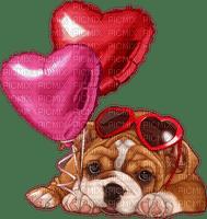 dog chien hund balloon ballons heart coeur valentine valentin valentinstag