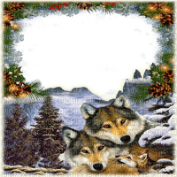winter frame wolf hiver cadre loup