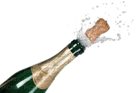 CHAMPAGNER BOTTLE NEW YEAR