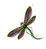 Insects, Insect, Dragonflies, Dragonfly, Multi, Rainbow - Jitter.Bug.Girl
