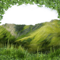spring printemps fond background hintergrund  image paysage  landscape  grass prairie Meadow wiese  tube hill berg montagne colline tube leaves