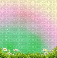 multicolore image encre la nature bonne anniversaire fleurs mariage vert violet printemps edited by me