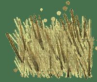 hö--gräs