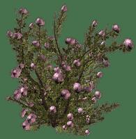 minou-floral bush-arbuste floral-cespuglio floreale-blombuske-deco