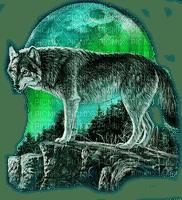 wolf green moon loup vert lune