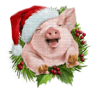 New Year pig