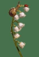 easter ostern Pâques paques spring printemps frühling primavera весна wiosna flower fleur blossom bloom blüte fleurs blumen