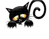 black cat halloween chat noir