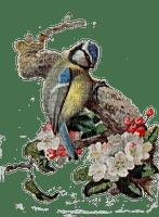 bird spring flowers bloom blossom paintinglounge