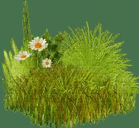 jardin fleur-garden-flower-calm happiness