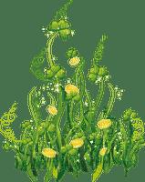 grass flower border herbe fleur