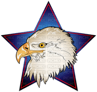 Kaz_Creations America 4th July Independance Day American Eagle Star