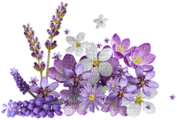 Kaz_Creations Flowers Purple