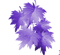AUTUMN LEAVES PURPLE🍁 AUTOMNE FEUILLES VIOLET
